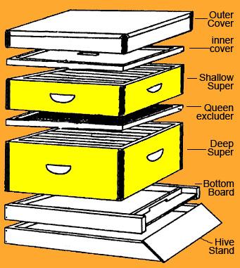 beehive_diagram