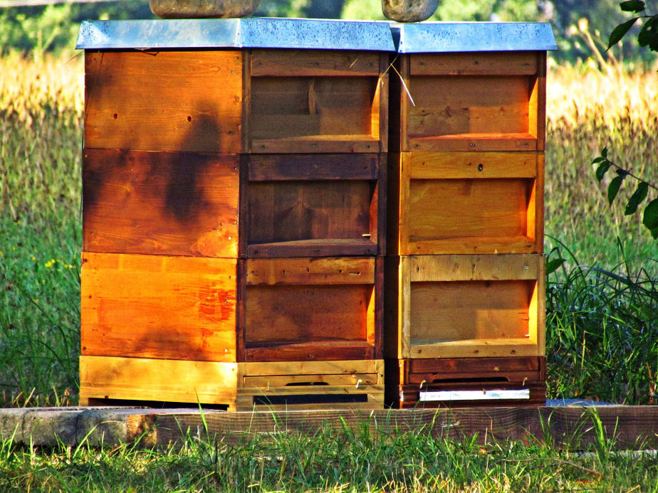 Moveable frame beehive